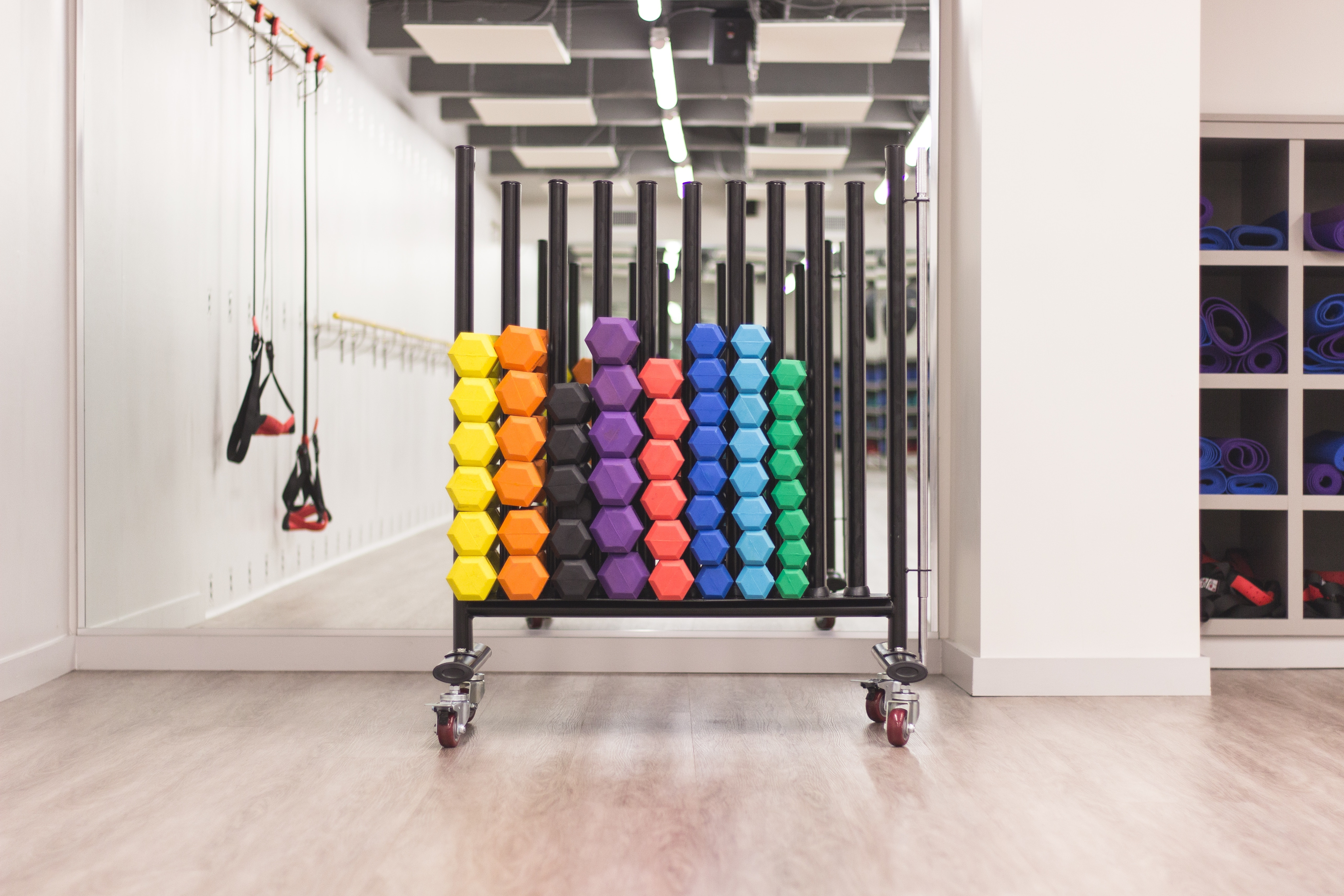Fitness rack filled with colorful dumbbells